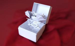 Jewelry Box Concept